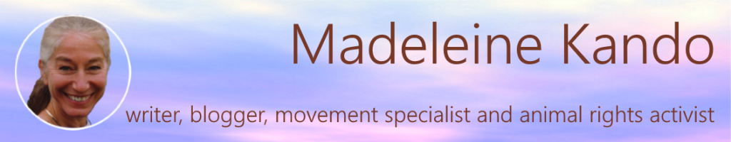 Logo-Madeleine Kando